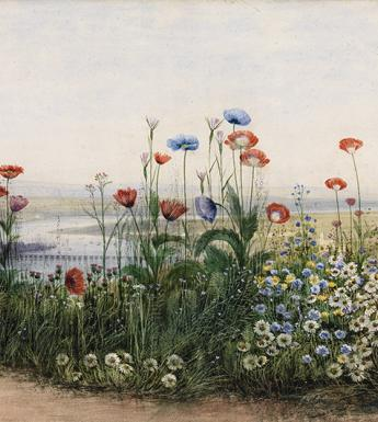 Andrew Nicholl, Londonderry beyond a bank of flowers