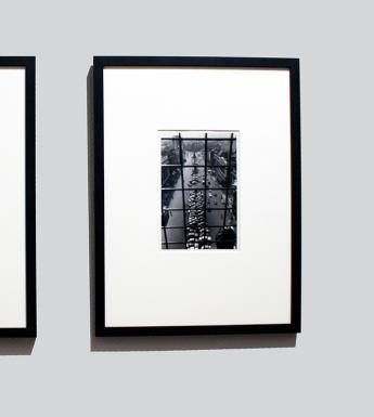 Two black and white photographs, framed and mounted, hanging side by side on a grey wall.