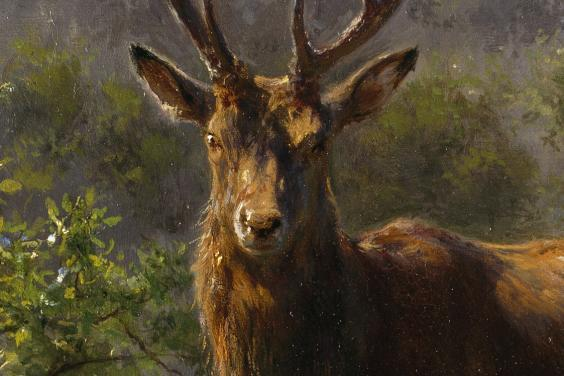 Painting of a stag